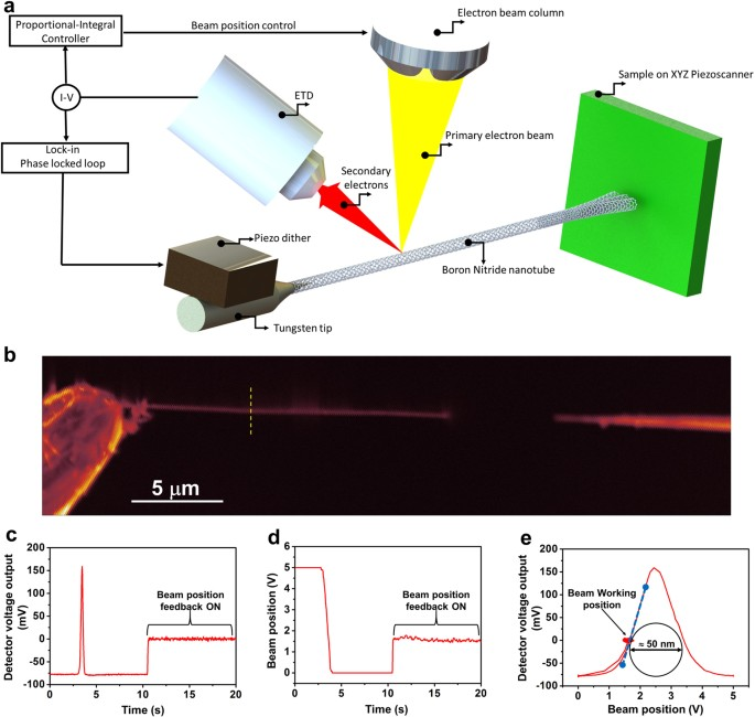 Electron beam detection of a Nanotube Scanning Force