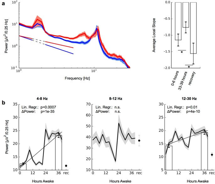 Decline Of Long Range Temporal Correlations In The Human Brain