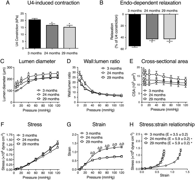 estrogenic vascular effects are diminished by chronological aging