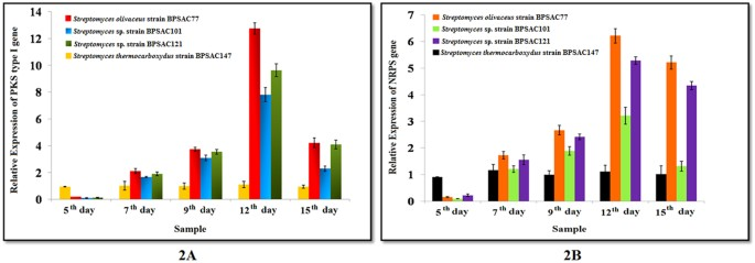 Insights Into The Functionality Of Endophytic Actinobacteria With A