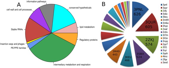 A genome-wide structure-based survey of nucleotide binding