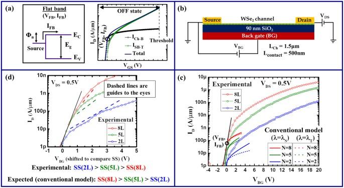 Understanding contact gating in Schottky barrier transistors