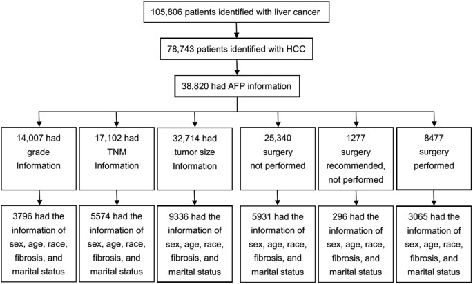 Patients With Hcc And The Required Clinical Data Between 1988 2017 Were Selected From Cancer Registries Of Surveillance Epidemiology