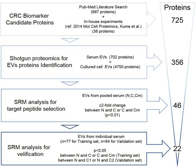 Quantitation of putative colorectal cancer biomarker