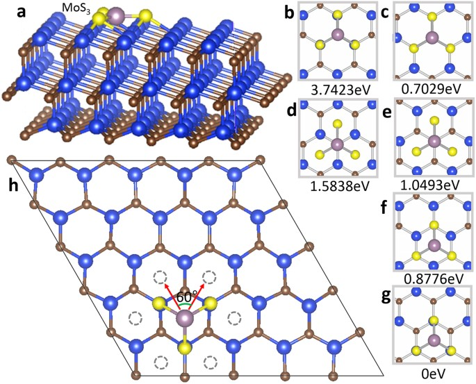 Effect Of Substrate Symmetry On The Dendrite Morphology Of Mos 2