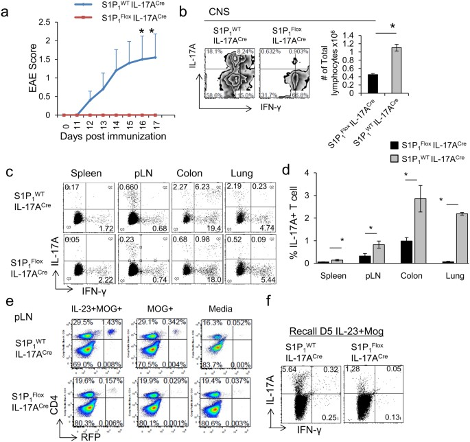 check-out ad5ca f1e73 S1P 1 deletion differentially affects TH17 and Regulatory T ...