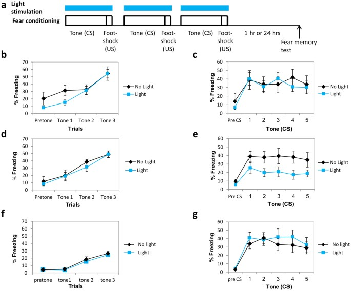 Affecting long-term fear memory formation through optical control of ...
