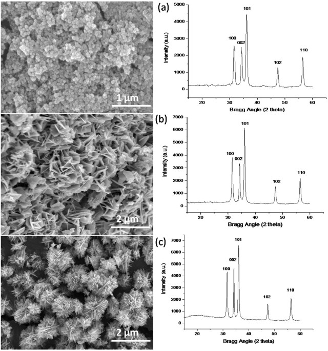 Visible and uv photo detection in zno nanostructured thin films fe sem images and xrd results of zno nanostructures a nps formed in 15 minutes by using c2h5oh solvent b zno nss formed in 4 hours using malvernweather Gallery