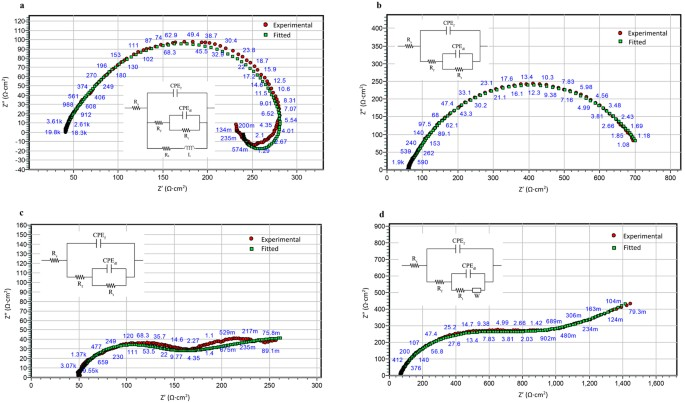 Biocompatibility and biodegradation studies of a commercial zinc eis fitting of experimental data for a pure zinc after 2 hours b pure zinc after 72 hours c zinc alloy after 2 hours and d zinc alloy after 72 ccuart Image collections