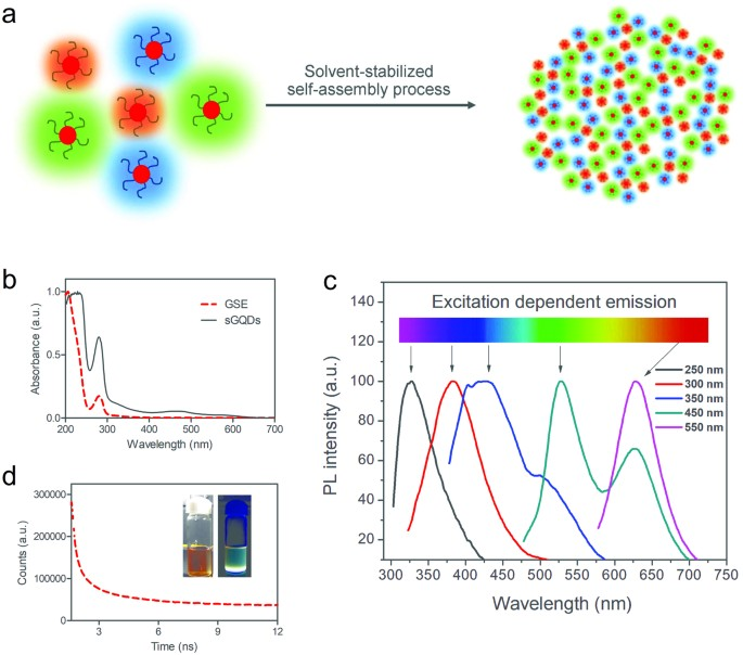 Graphene Quantum Dots for Cell Proliferation, Nucleus Imaging, and ...