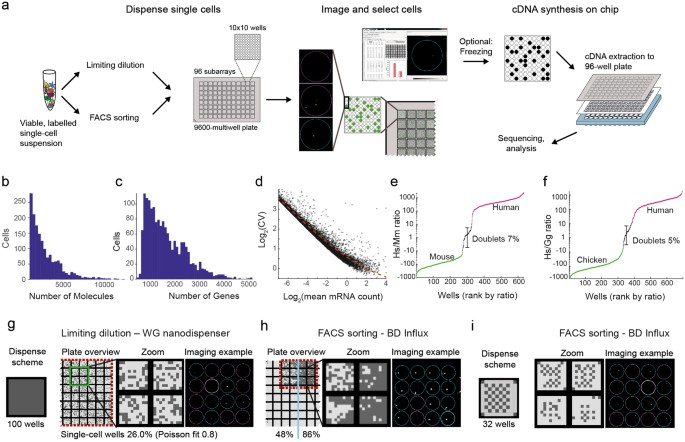 STRT-seq-2i: dual-index 5ʹ single cell and nucleus RNA-seq
