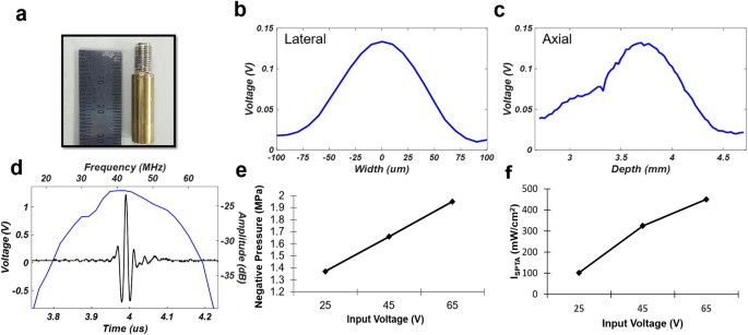 A Multimodal Biomicroscopic System Based On High Frequency