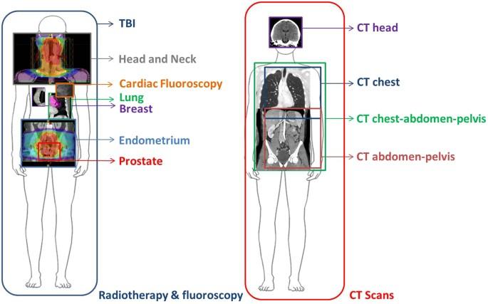 Fdxr Is A Biomarker Of Radiation Exposure In Vivo Scientific Reports