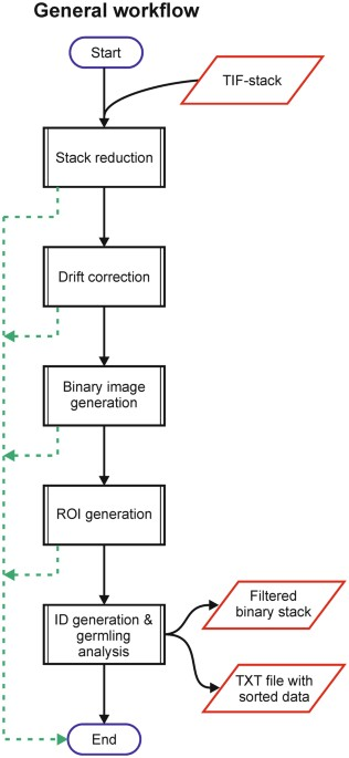 HyphaTracker: An ImageJ toolbox for time-resolved analysis of spore ...