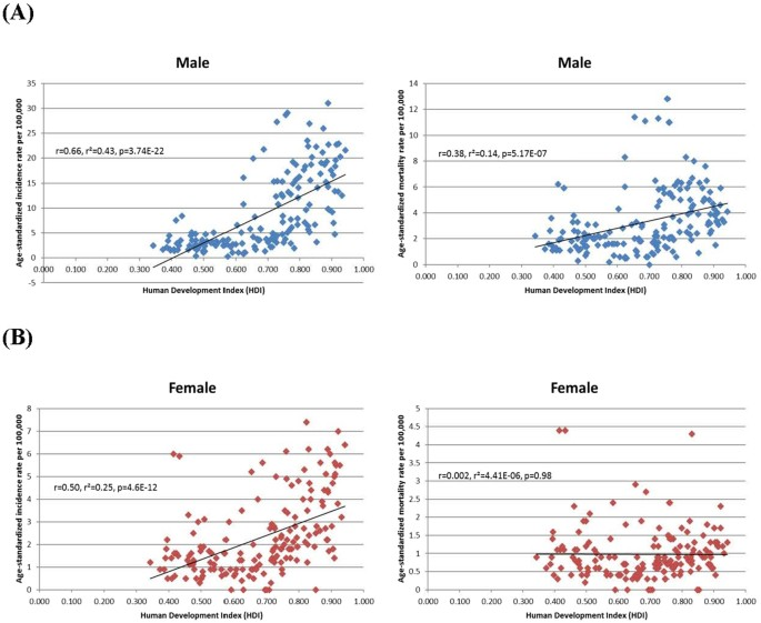 The Global Epidemiology Of Bladder Cancer A Joinpoint Regression