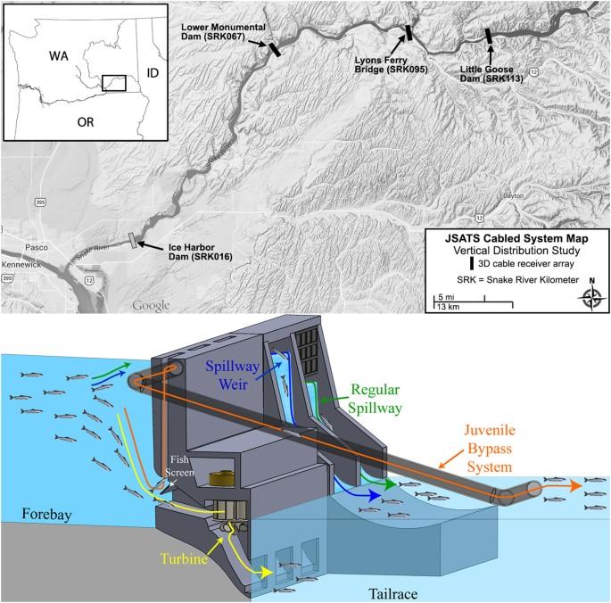 Snake River Washington Map.Three Dimensional Migration Behavior Of Juvenile Salmonids In