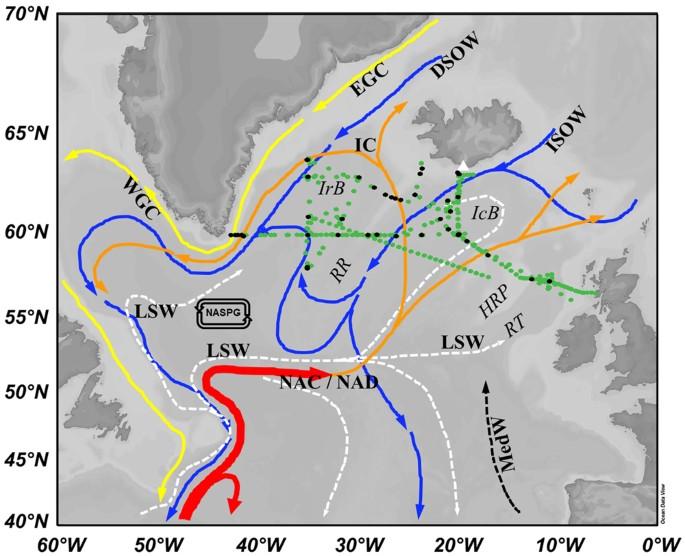 Iron Biogeochemistry in the High Latitude North Atlantic Ocean