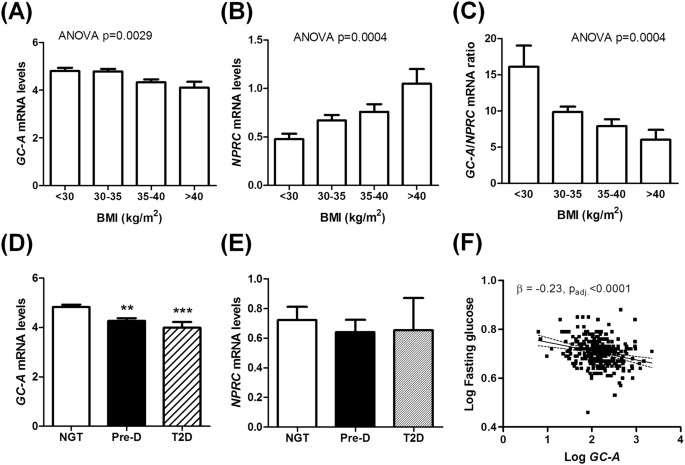 Natriuretic peptides promote glucose uptake in a cGMP