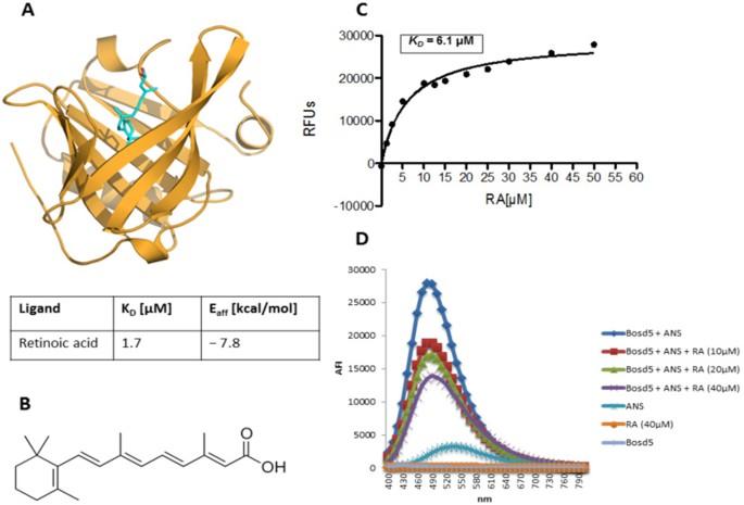 41598_2018_19883_Fig1_HTML retinoic acid prevents immunogenicity of milk lipocalin bos d 5