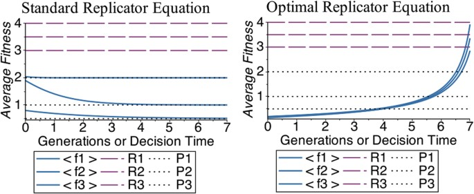 first order optimal strategy