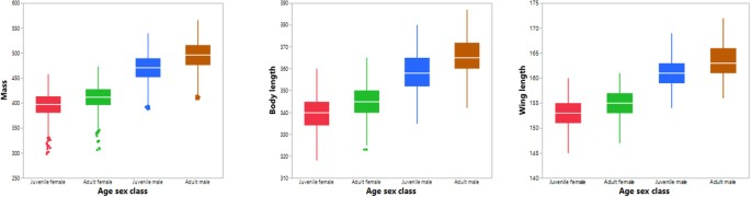The effects of scaling on age, sex and size relationships in Red