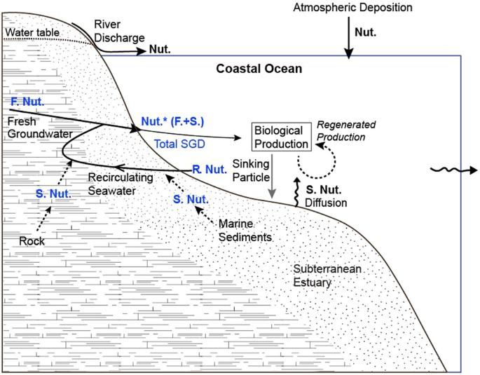 Radium Tracing Nutrient Inputs Through Submarine Groundwater