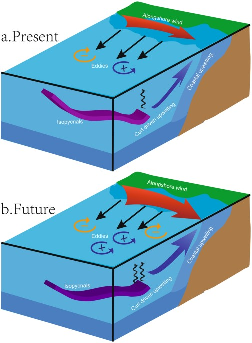 Future changes in coastal upwelling ecosystems with global warming conceptual diagram of future changes in deep nutrients alongshore winds wind stress curl coastal upwelling and eddy activity ccuart Choice Image