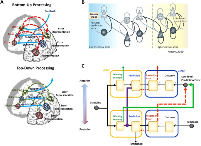 Frontal cortex function as derived from hierarchical predictive