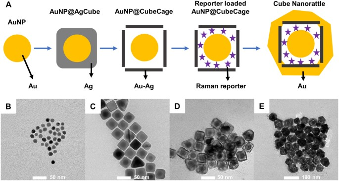 Direct Detection of Unamplified Pathogen RNA in Blood Lysate