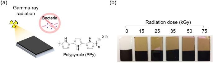Effective gamma-ray sterilization and characterization of