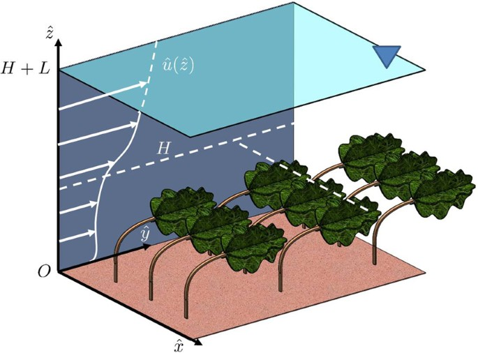 Universal Scaling Law For Flow Resistance Over Canopies With Complex Morphology Scientific Reports