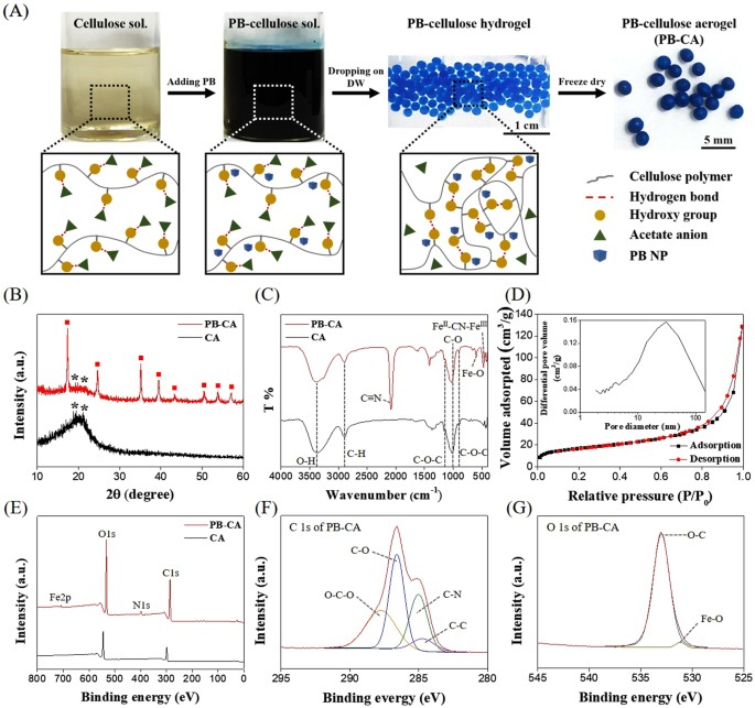 Porous 3d prussian bluecellulose aerogel as a decorporation agent a schematic diagram of the fabrication of pb ca composite b xrd patterns of ca and pb ca composite c ft ir spectra of ca and pb ca ccuart Images