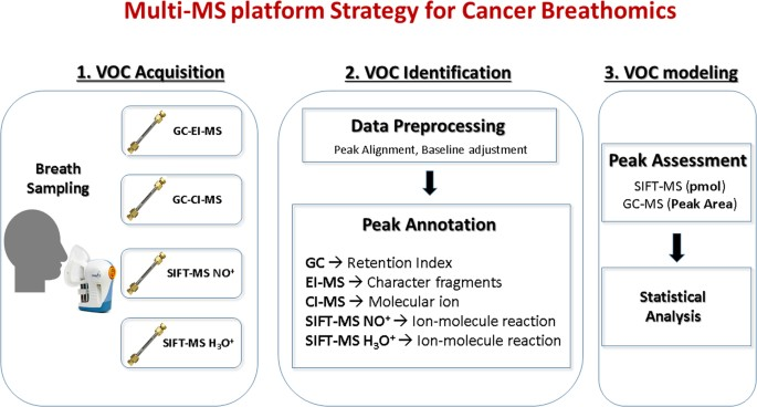 Cross-platform mass spectrometry annotation in breathomics