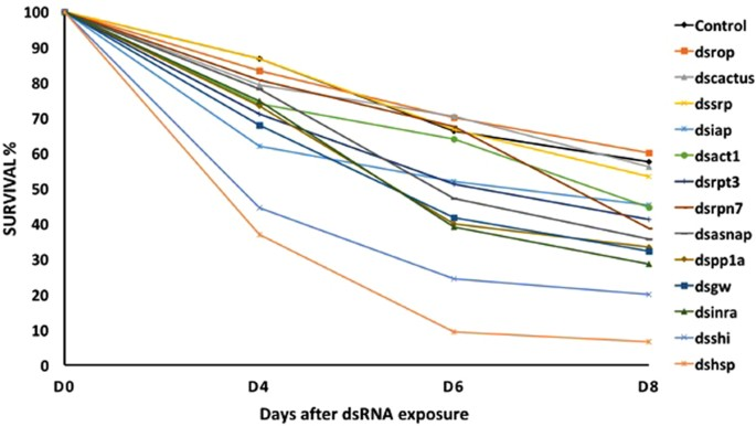 Identification of highly effective target genes for RNAi-mediated