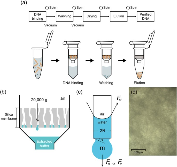 Centrifugation Free Extraction Of Circulating Nucleic