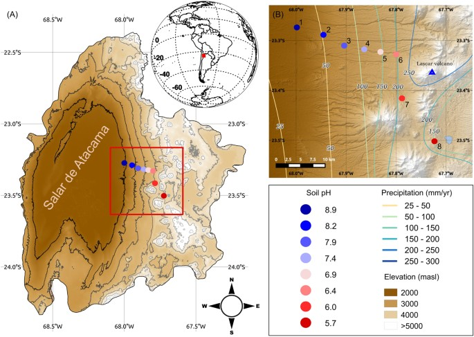 Structure and co-occurrence patterns in microbial communities under ...