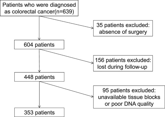 Mutation Status And Prognostic Values Of Kras Nras Braf And Pik3ca In 353 Chinese Colorectal Cancer Patients Scientific Reports