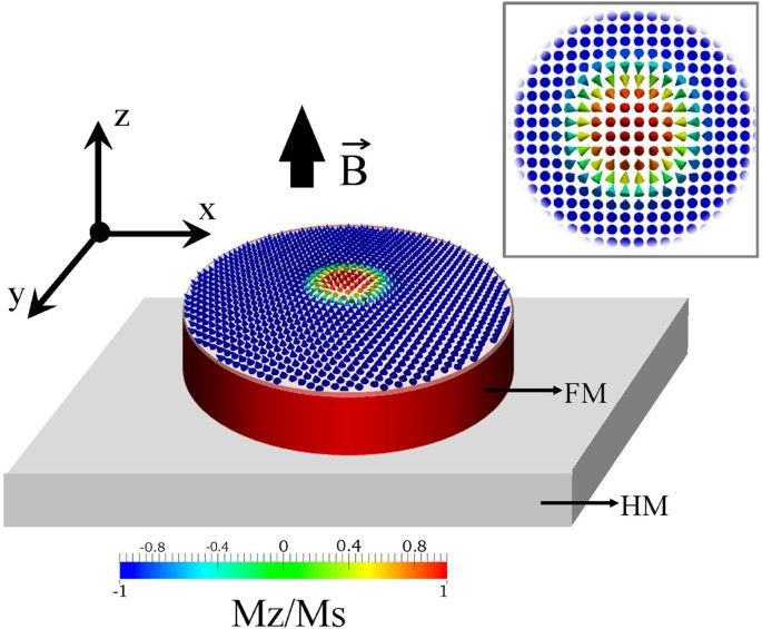 Distinct Magnetic Field Dependence Of Nel Skyrmion Sizes In