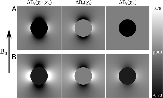 Quantifying Mri Frequency Shifts Due To Structures With Anisotropic