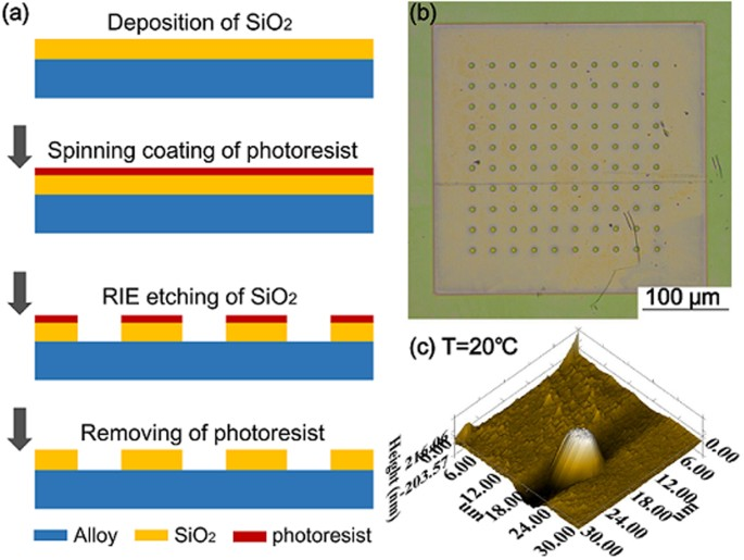 In situ full-field measurement of surface oxidation on Ni-based