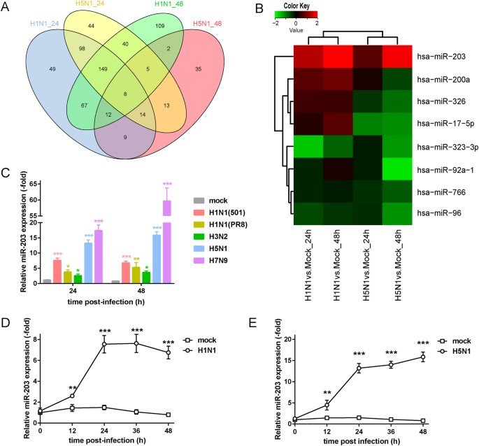 Up Regulation Of Microrna 203 In Influenza A Virus Infection