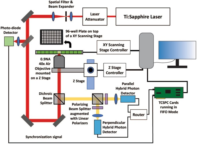 Auto-FPFA: An Automated Microscope for Characterizing