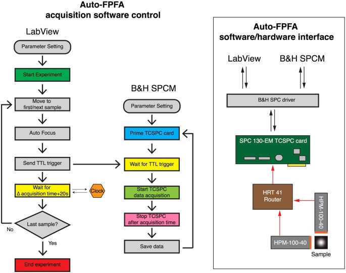Auto-FPFA: An Automated Microscope for Characterizing Genetically