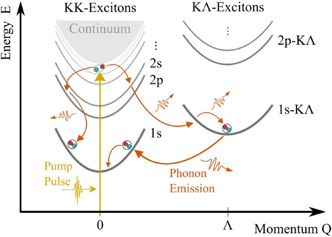 Exciton Relaxation Cascade in two-dimensional Transition