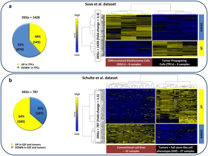 Computational identification of specific genes for glioblastoma stem