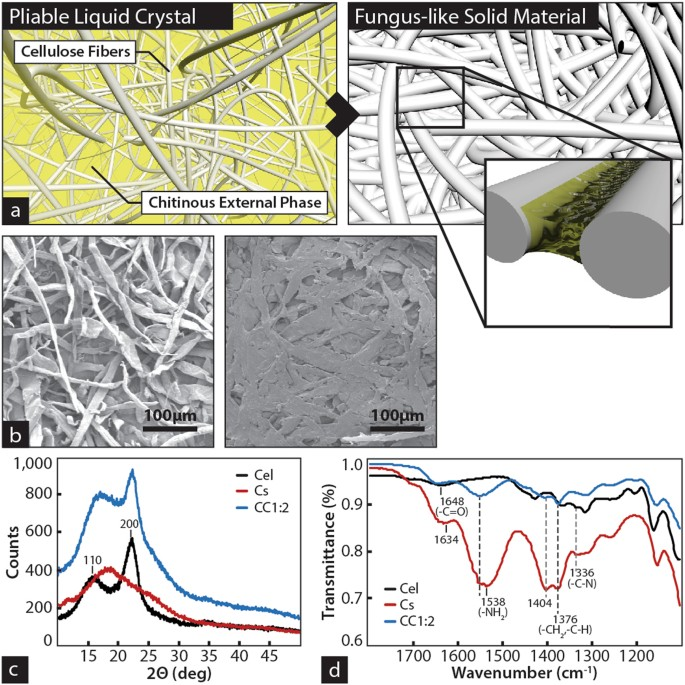 Large-scale additive manufacturing with bioinspired cellulosic