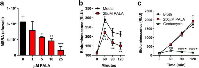 pyrimidine synthesis inhibition enhances cutaneous