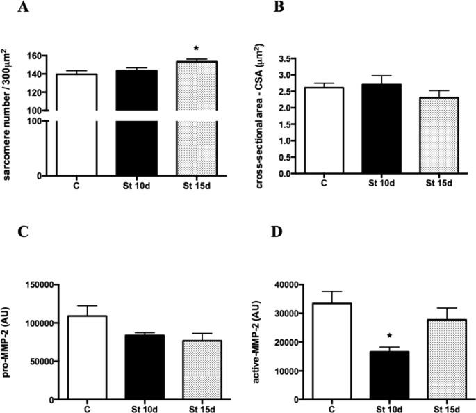 Regulation Of Extracellular Matrix Elements And Sarcomerogenesis In