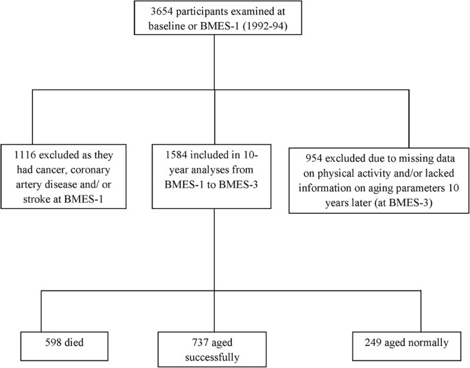 Physical Activity as a Determinant of Successful Aging over Ten Years