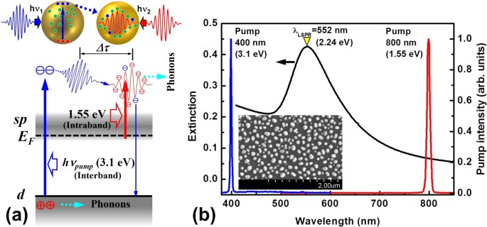 Transient Localized Surface Plasmon Induced By Femtosecond